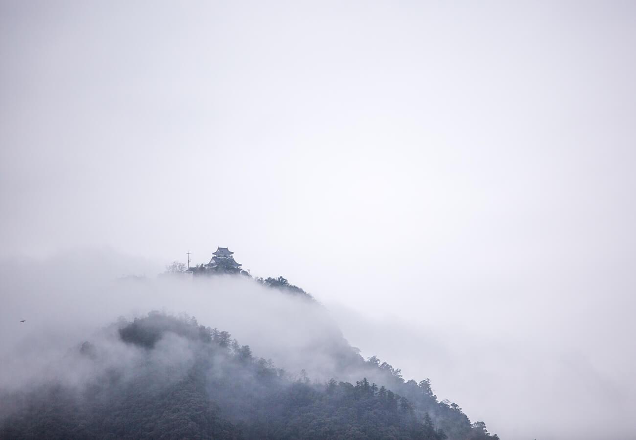 雲海の金華山